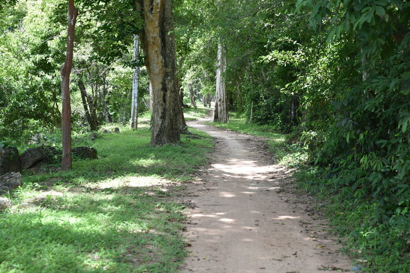 Trail from Gate of the Dead to Prasat Chrung Southeast.