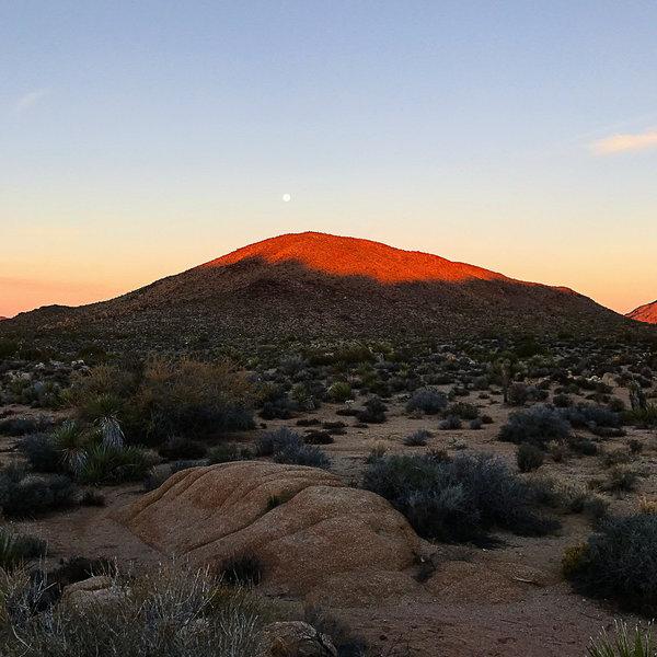 Moon setting near Desert Queen.