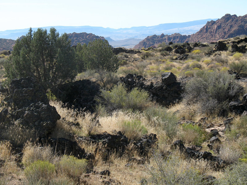 Volcanic rock on the Lava Flow trail at Snow Canyon State Park.