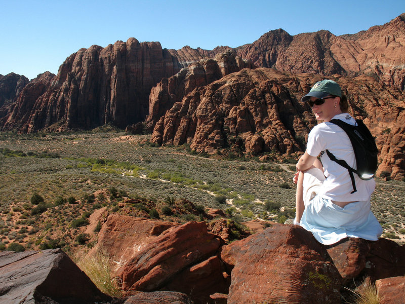 A commanding view of Snow Canyon state park from just above the Lava Flow trail.