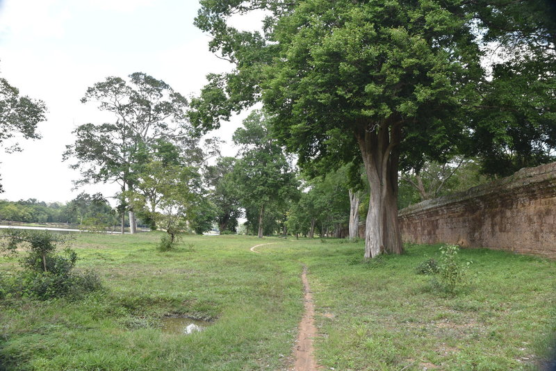 Along the north side of the Angkor Wat Wall Trail.
