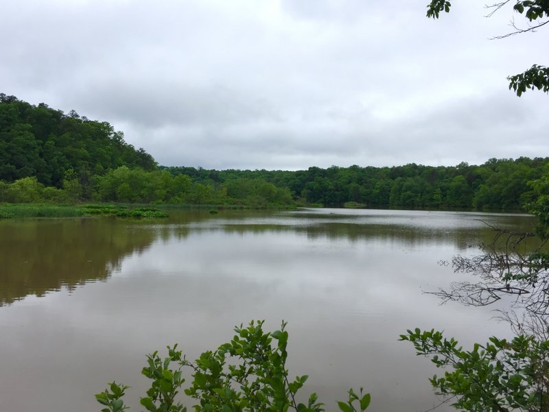 Part of Bull Sluice Lake as seen from the southern loop of the trail system.