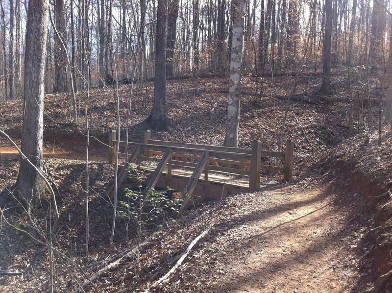 A sturdy bridge aids your passage over this drainage on the Gold Branch Trail.