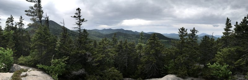 Taking in the views from the UNH Trail.