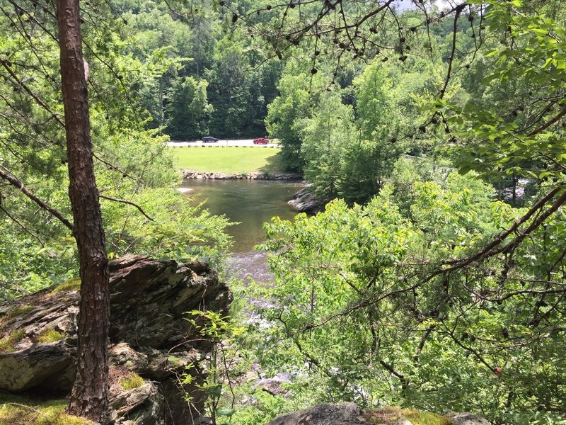 """View of the Townsend """"Y"""" near the end of the trail. Keep in mind that unless you return to the trailhead, you must cross the river."""