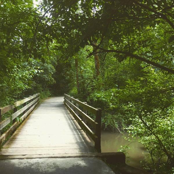 A lovely bridge over Rock Creek.