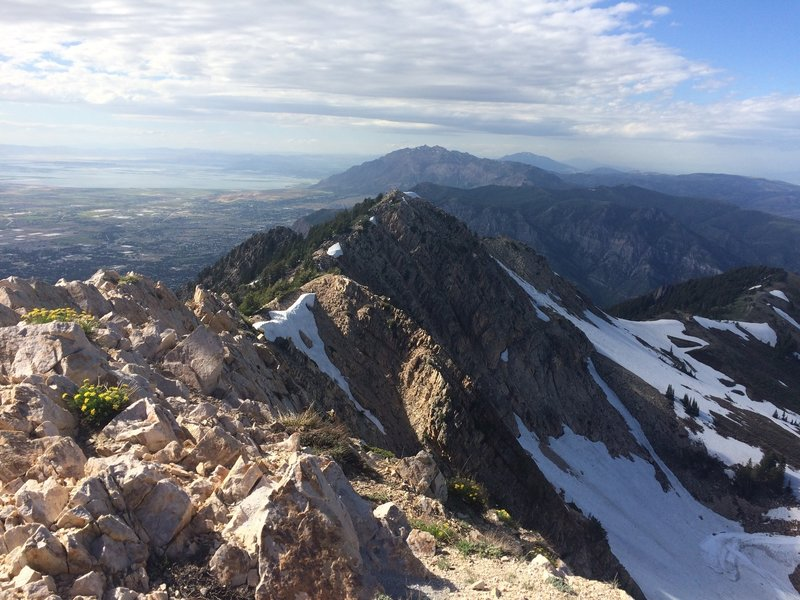 View north from the Mt. Ogden summit.