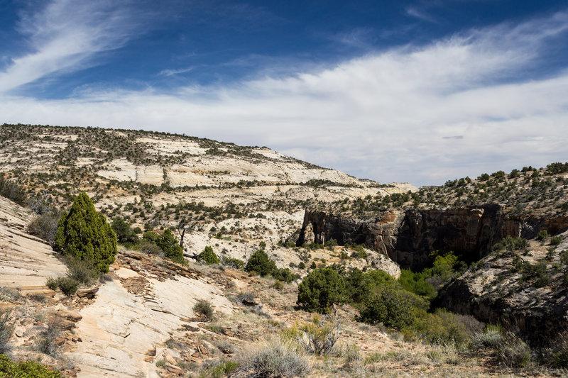 Looking downstream at Calf Creek Canyon.
