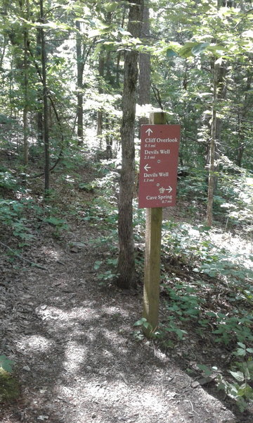 At this sign, turn right (SW) for the side trail to Cave Spring. It's well worth the 0.7 miles out.