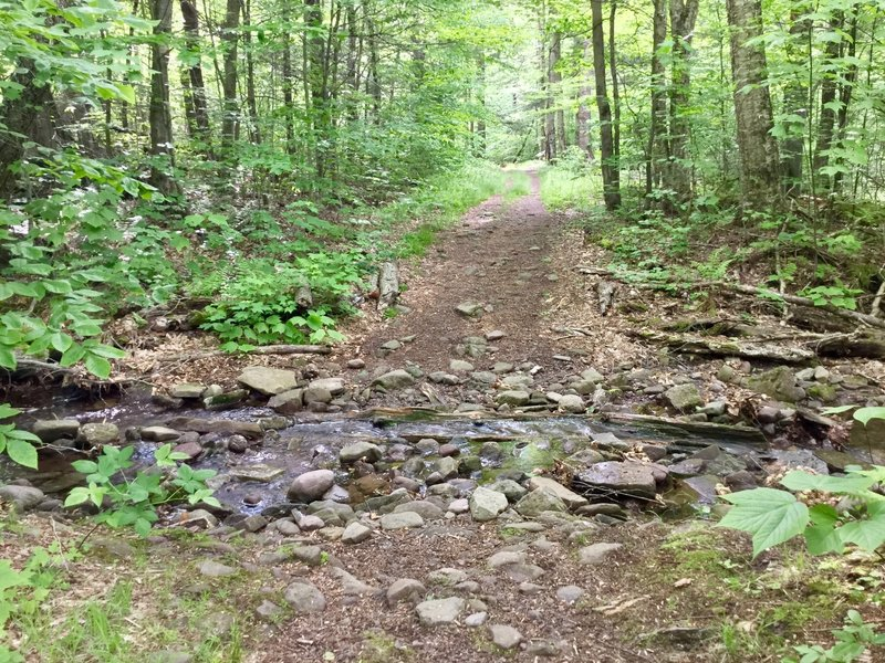 In days gone by, this old carriage road was the route that connected Phoenicia to Clarryville.