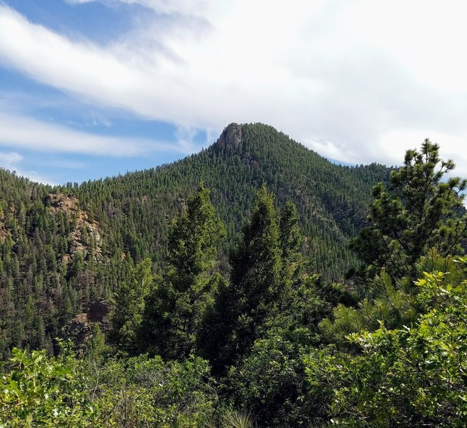 View of Mt. Cutler looking South from Mid-Columbine Trail.