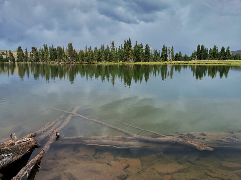 A sunken log lurks beneath the surface of Deadman Lake.