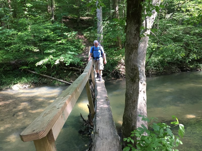 A fun log bridge over Hurricane Creek.