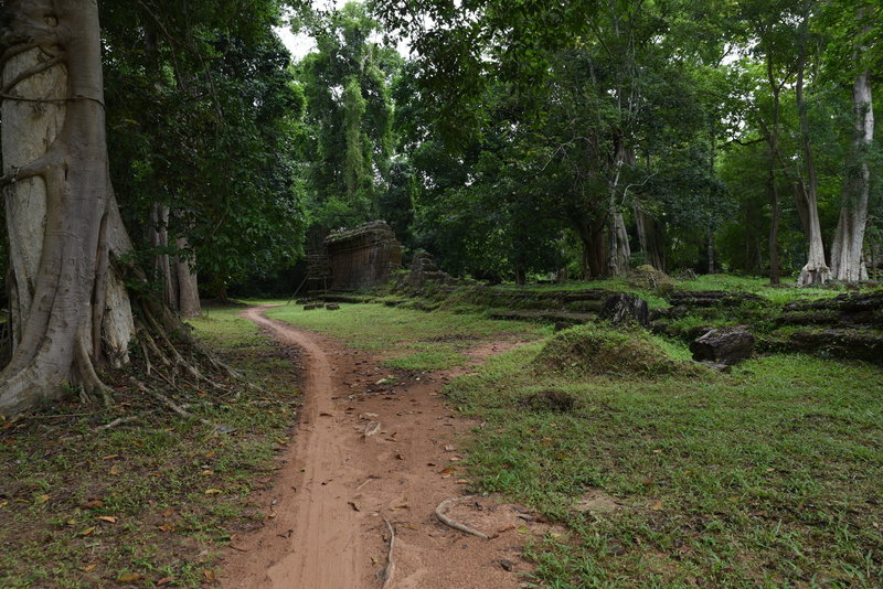 Ruins and large trees make for a beautiful setting on the Preah Khan Trail.