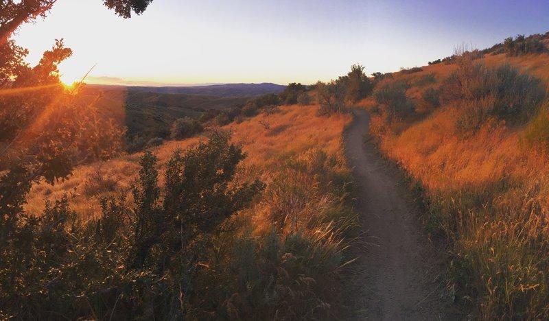 Sunset on the Doe Ridge Trail