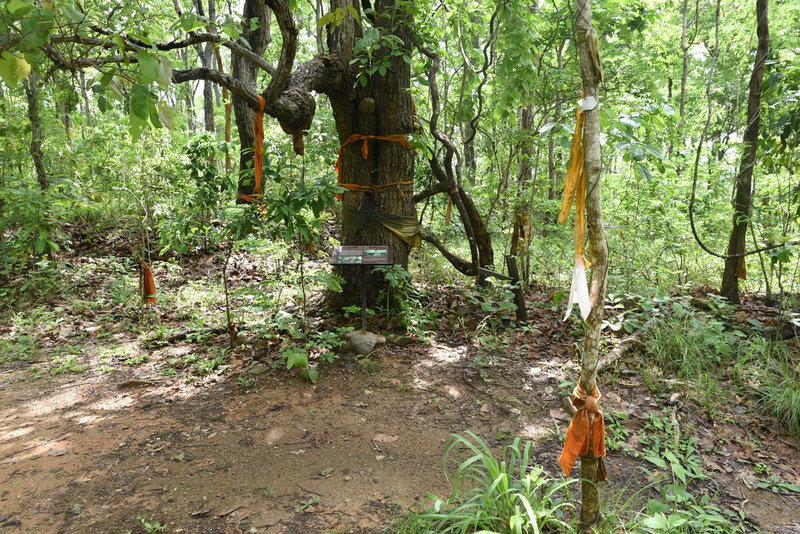 Monk's robes can be found tied to treees along the trail.