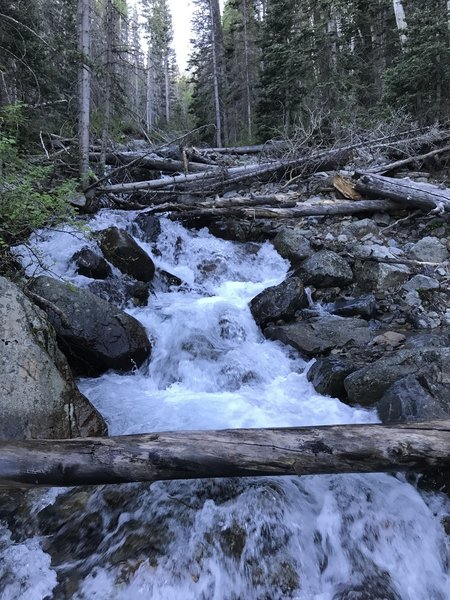 Ice-cold, snow-fed streams tumble down the mountainside.