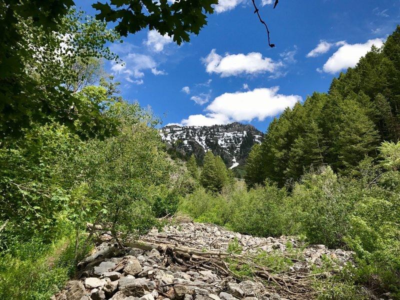 Enjoy plenty of great views of Cherry Peak along the trail.