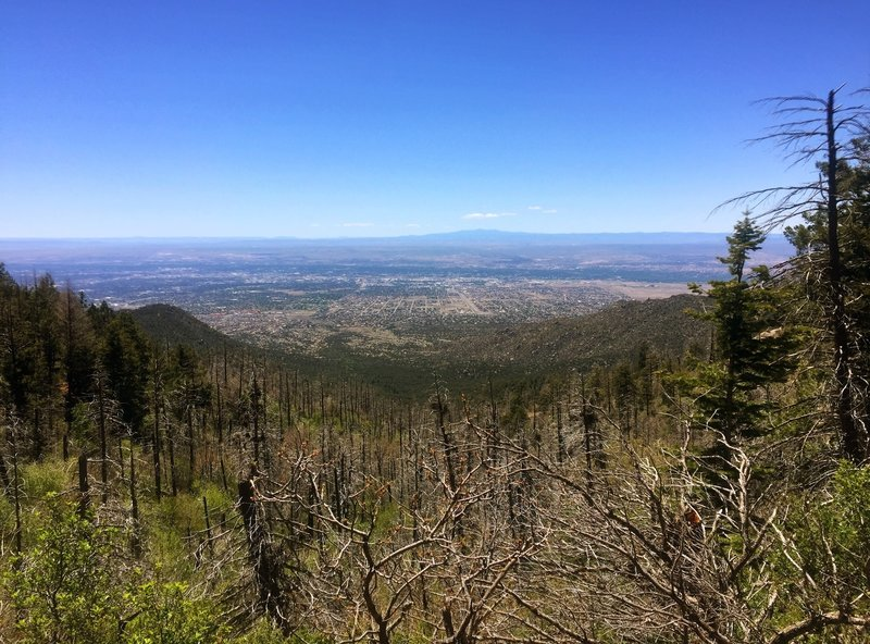 The Pino Trail offers great overlooks of Albuquerque.