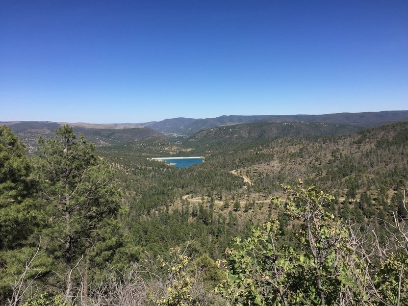 The forest outside of Ruidoso is quite beautiful when seen from the Alfred Hale Connector.