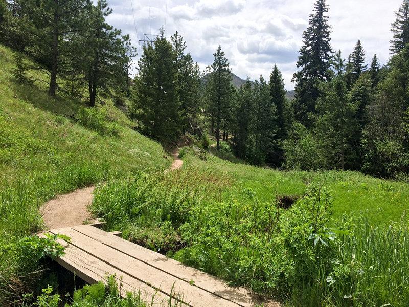 A sturdy plank bridge aids your passage over Bear Creek.