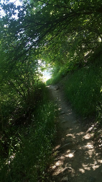 The Wind Caves Trail is beautiful in late spring.