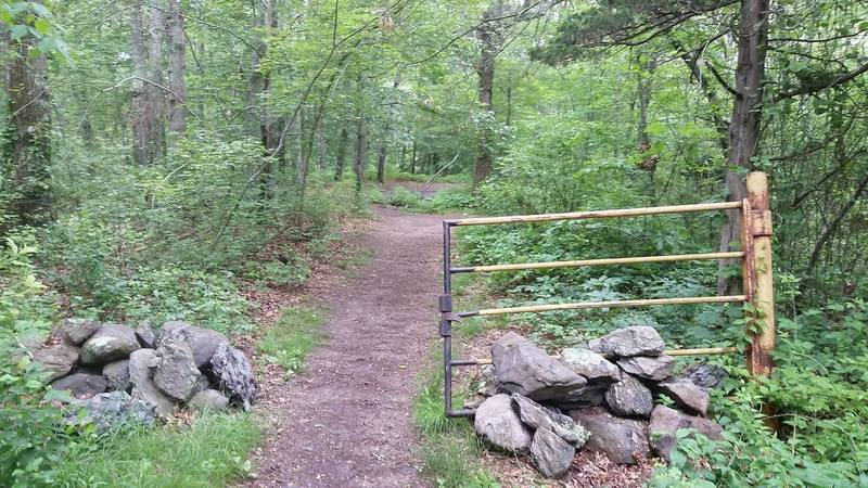 This gate marks the official entrance to the trails at Village Park.