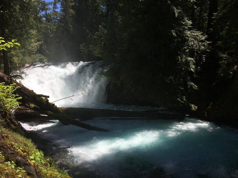 McKenzie River Trail follows its beautiful namesake river.