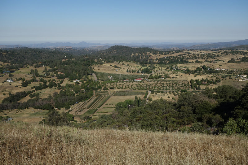 Volcan Valley Apple Farm and the Menghini Winery can be seen from the Five Oaks Trail.