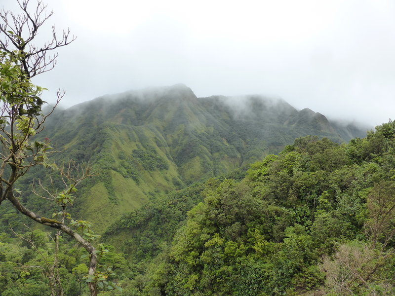 A great view awaits near the top of Morne Nichols.