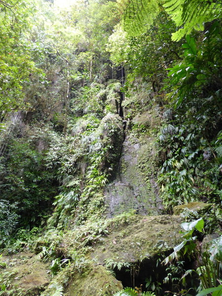 Check out this nearly vertical volcanic escarpment along the trail.