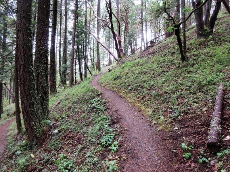 Snark trail as it climbs to Bandersnatch (Robert Nicholson photo)