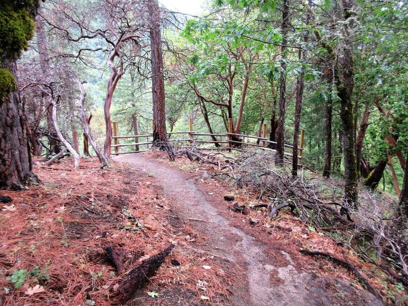 Lower Red Queen Trail has a beautifully smooth tread.