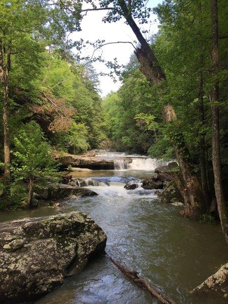 Bark Camp Creek Cascades.
