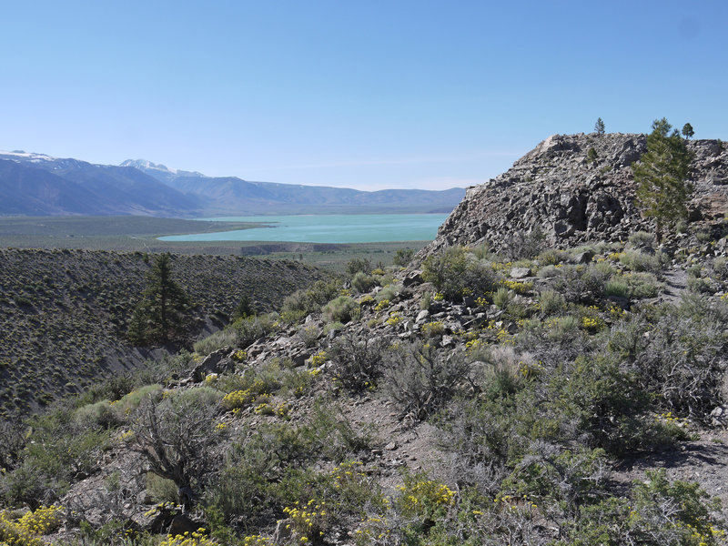 Mono Lake pokes around the edge of Panum Crater.