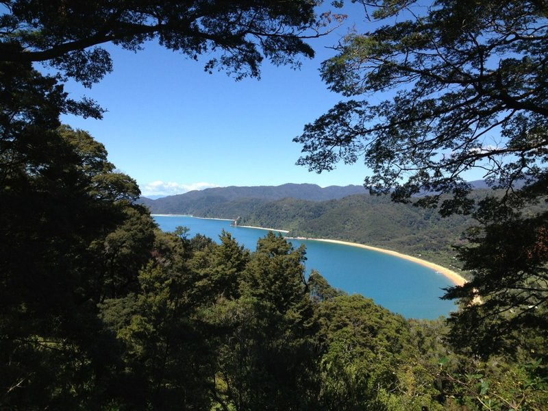 A view of Totaranui Beach through the trees along the Headlands Track.