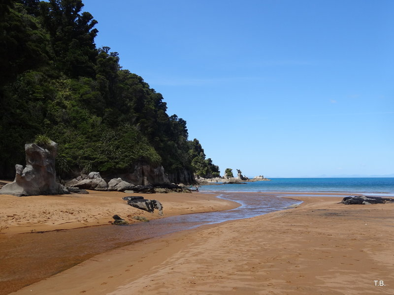 The small stream at the northern end of Totaranui Beach.