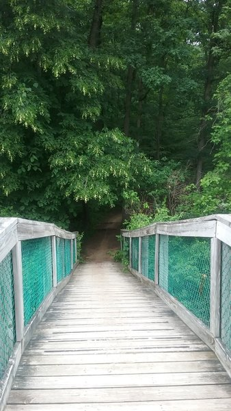 A bridge aids your passage over the water about 8 miles in.