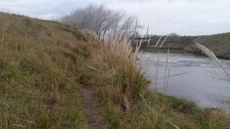 The trail follows right near the river.