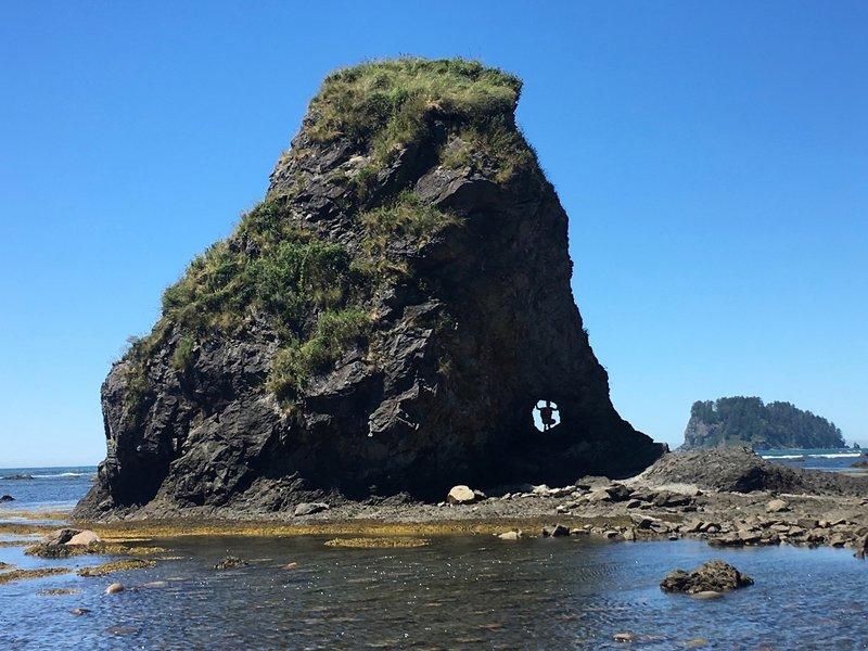 Experience fun sea stacks on the Ozette Triangle.