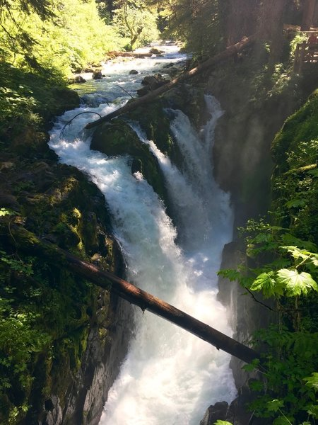 Sol Duc Falls rages with early summer runoff.