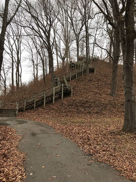 These stairs bring you to the top of Saul's Mound.