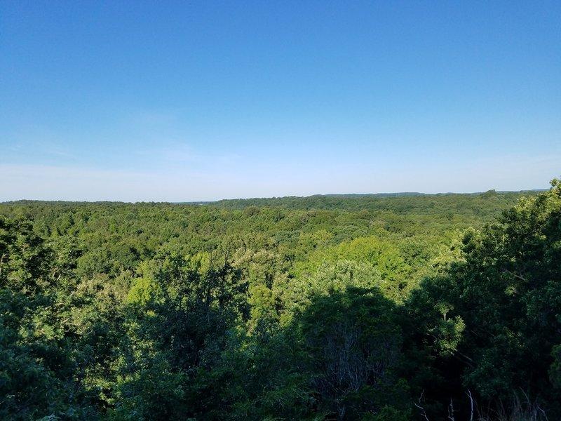 Enjoy pleasant views from the Blackjack Oak Trail.