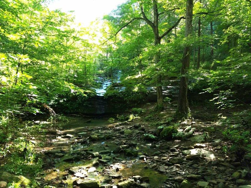 A waterfall on Rebman Trail.