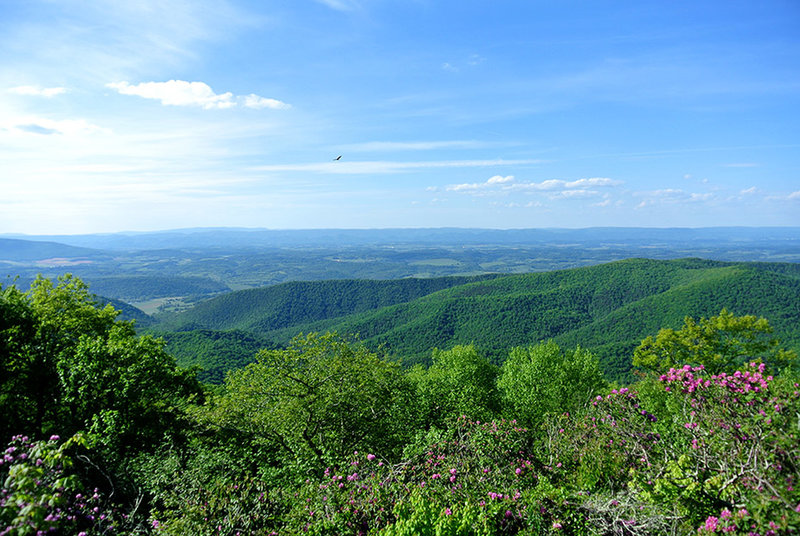 View from Comers Rock Lookout Platform, a side path from the trail, Built in 1930 by Civilian Conservation Corps.