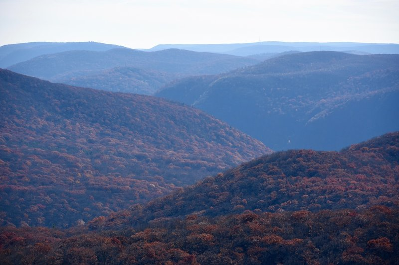 Visit this area in the autumn to see it erupt in fiery fall color.