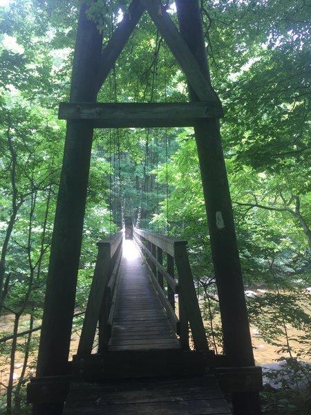 A beautiful bridge crosses the Tye River along the AT.