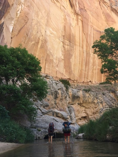 Two hikers wade through Lower Death Hollow.