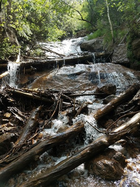 The bottom of St. Mary Falls is often full of debris.
