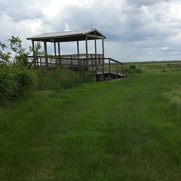 This overlook platform provides a great view of your grassy surroundings.